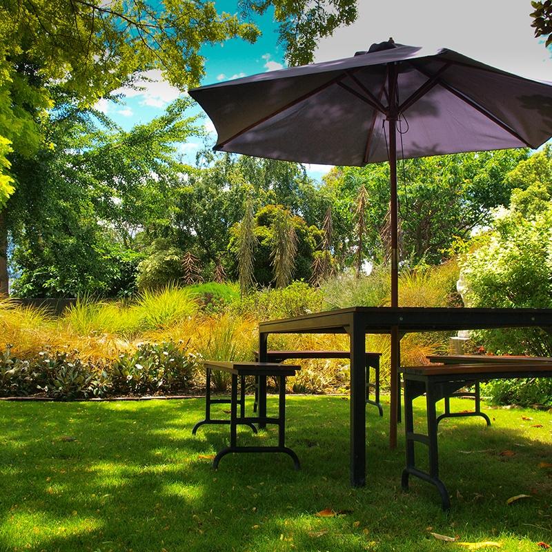 Dallas backyard oasis